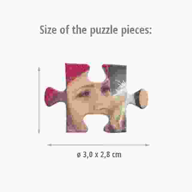 Size of the puzzle pieces
