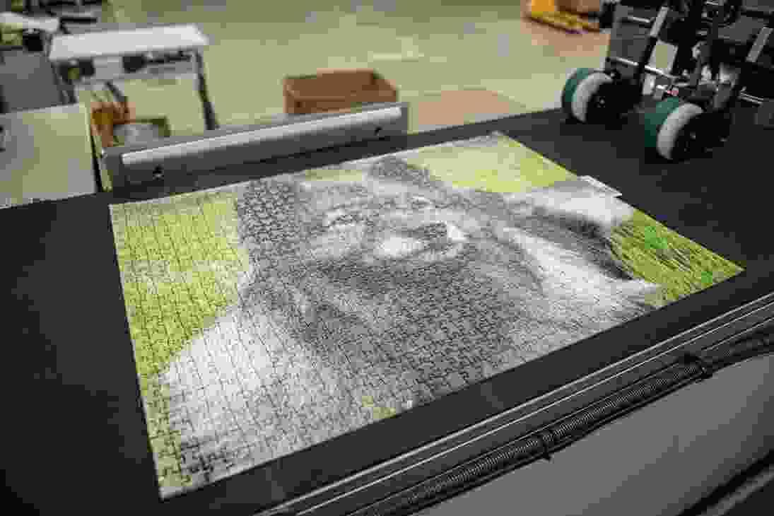 Cutting a photo puzzle